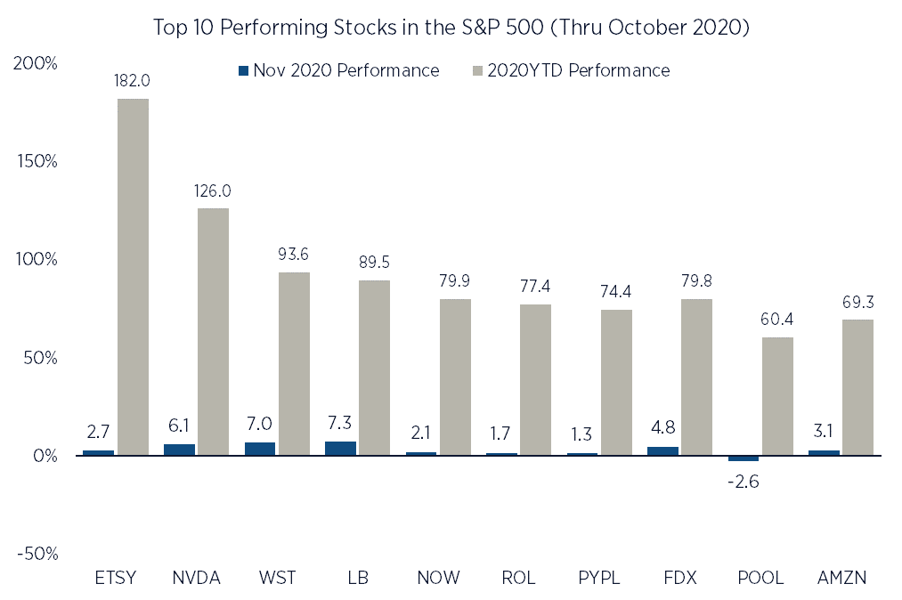 Best Performing Stocks in the S&P 500 thru October 2020YTD